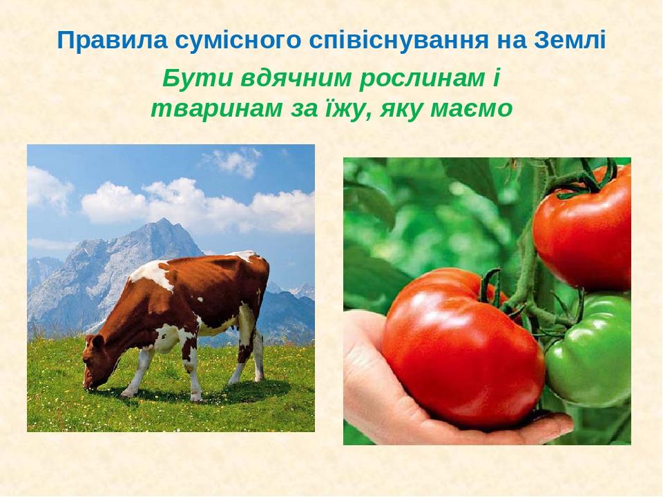 Бути вдячним рослинам і тваринам за їжу, яку маємо Правила сумісного співіснування на Землі