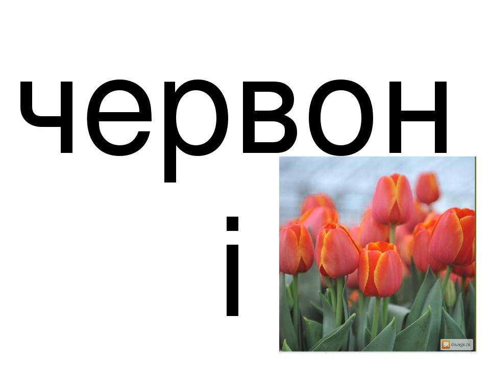 червоні