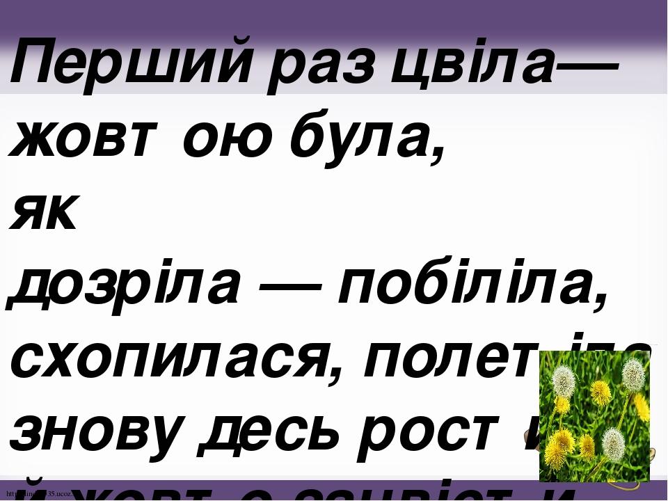 Перший раз цвіла— жовтою була, як дозріла—побіліла, схопилася, полетіла знову десь рости й жовто зацвісти . http://linda6035.ucoz.ru/