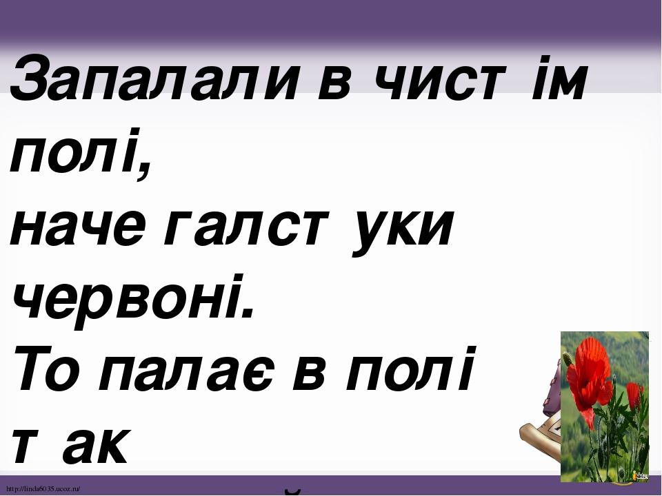 Запалали в чистім полі, наче галстуки червоні. То палає в полі так польовий червоний... http://linda6035.ucoz.ru/