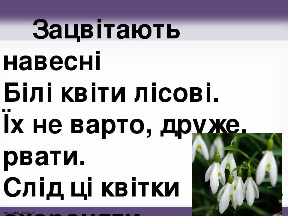 Зацвітають навесні Білі квіти лісові. Їх не варто, друже, рвати. Слід ці квітки охороняти. http://linda6035.ucoz.ru/
