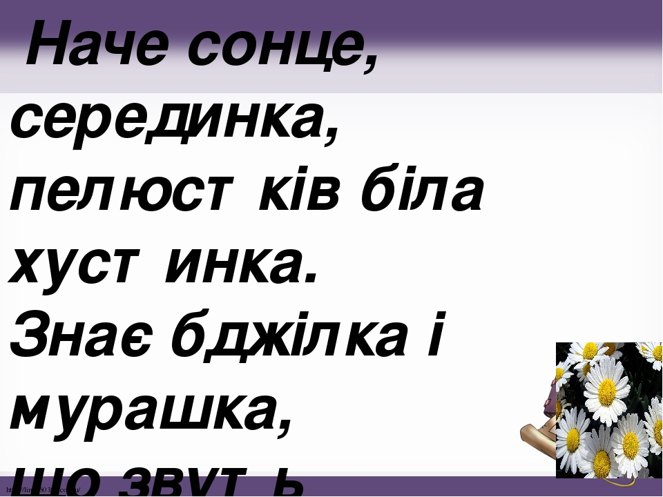 Наче сонце, серединка, пелюстків біла хустинка. Знає бджілка і мурашка, що звуть квіточку ... http://linda6035.ucoz.ru/