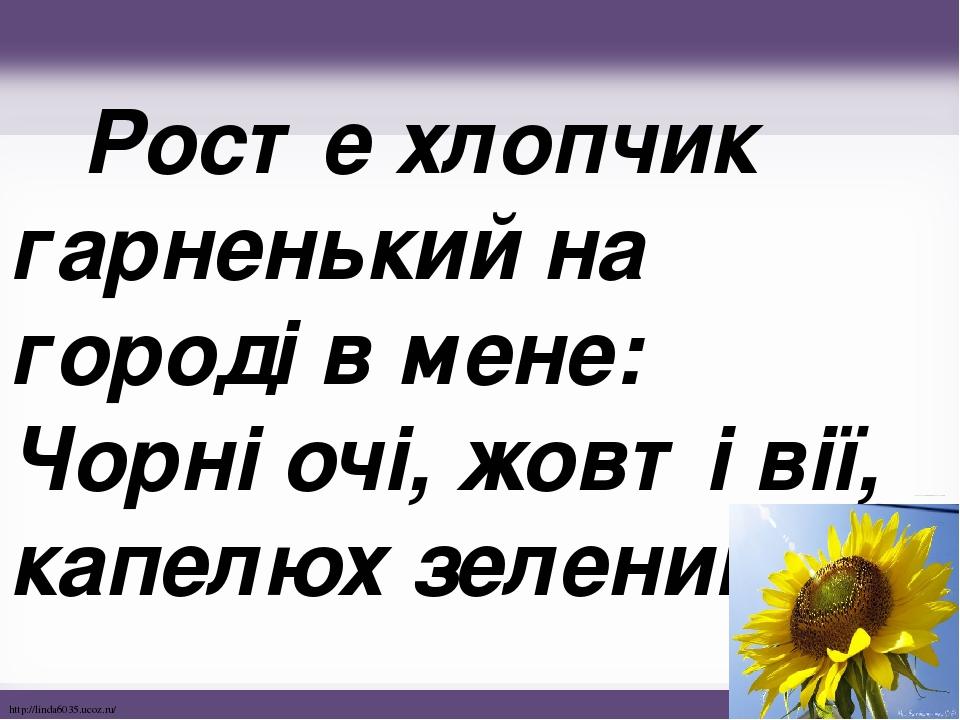 Росте хлопчик гарненький на городі в мене: Чорні очі, жовті вії, капелюх зелений. http://linda6035.ucoz.ru/
