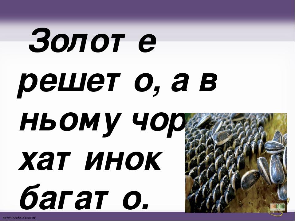 Золоте решето, а в ньомучорних хатинок багато. http://linda6035.ucoz.ru/
