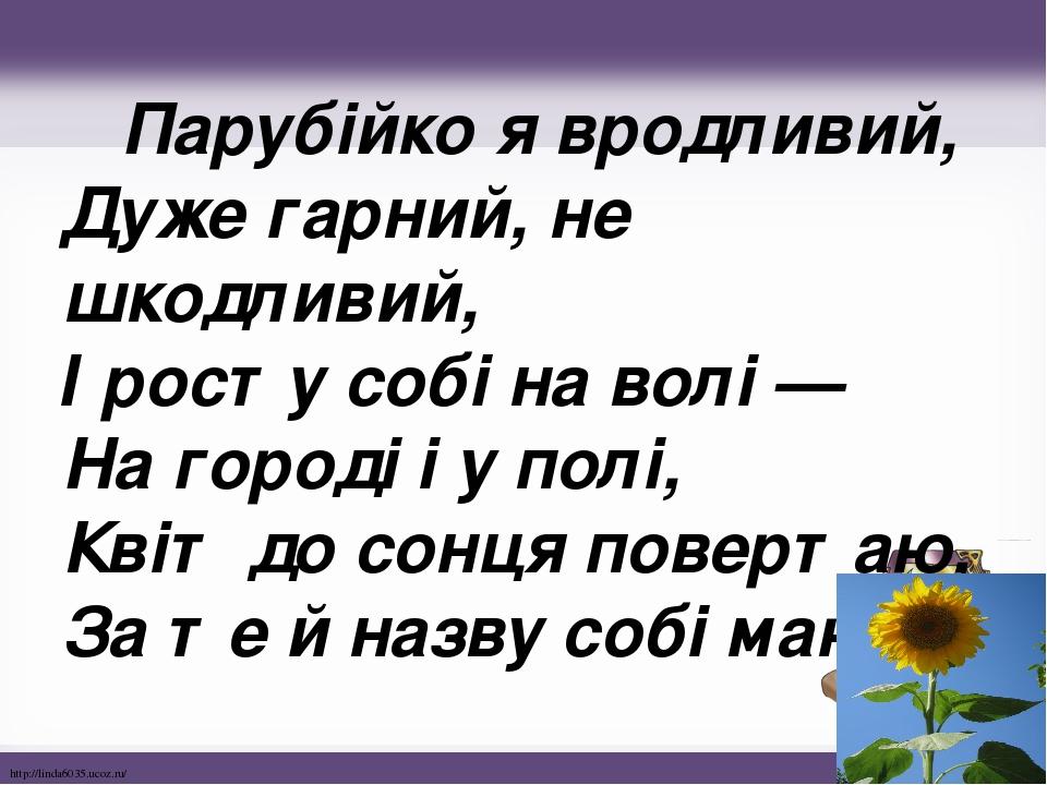 Парубійко я вродливий, Дуже гарний, не шкодливий, І росту собі на волі — На городі і у полі, Квіт до сонця повертаю, За те й назву собі маю. http...