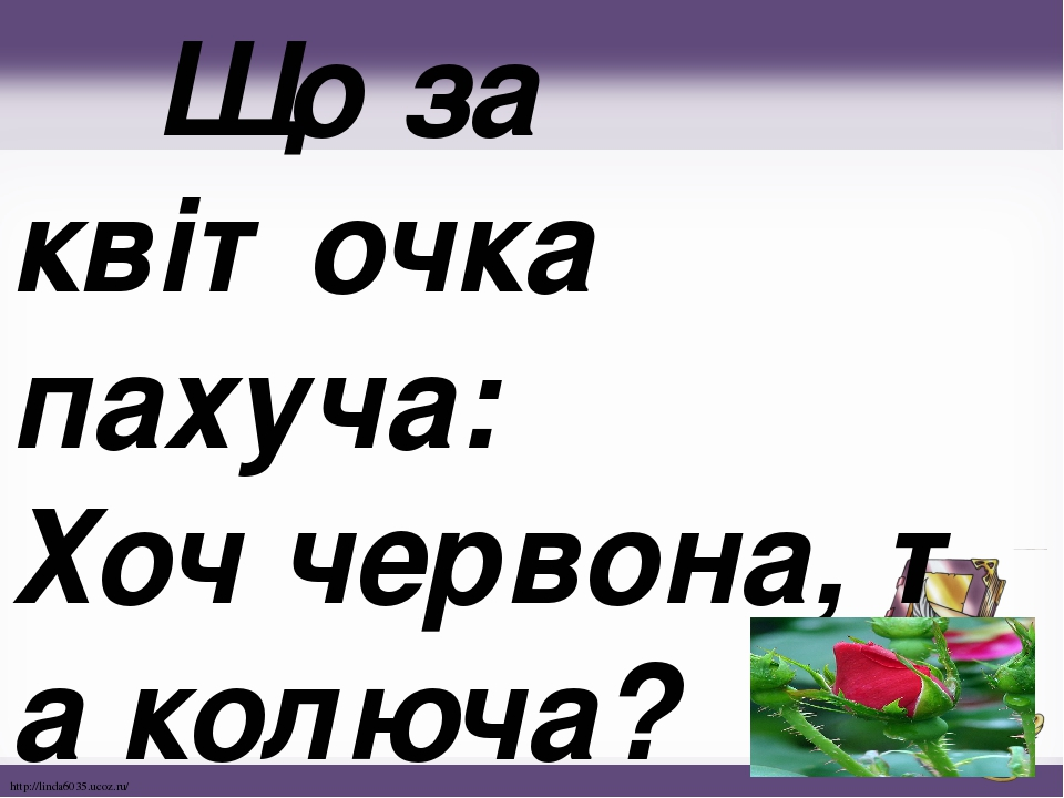 Що за квіточка пахуча: Хоччервона,таколюча? http://linda6035.ucoz.ru/
