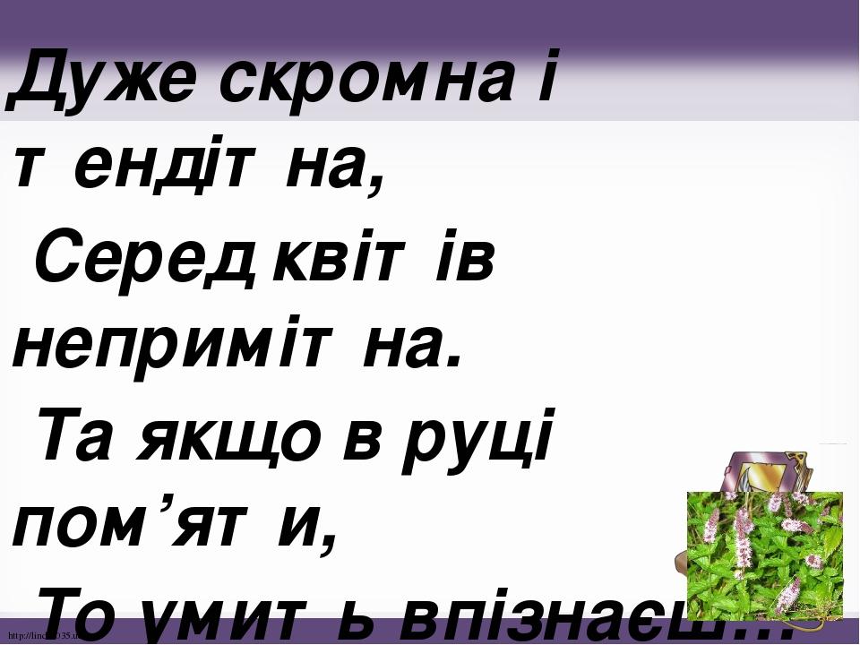 Дуже скромна і тендітна, Серед квітів непримітна. Та якщо в руці пом'яти, То умить впізнаєш… http://linda6035.ucoz.ru/