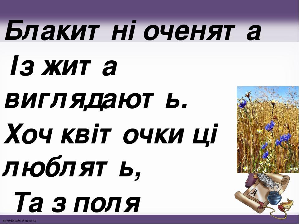 Блакитні оченята Із жита виглядають. Хоч квіточки ці люблять, Та з поля виганяють. http://linda6035.ucoz.ru/