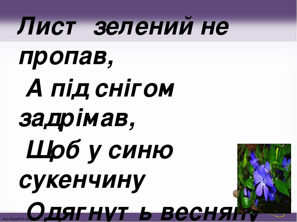 Лист зелений не пропав, А під снігом задрімав, Щоб у синю сукенчину Одягнуть весняну днину. http://linda6035.ucoz.ru/