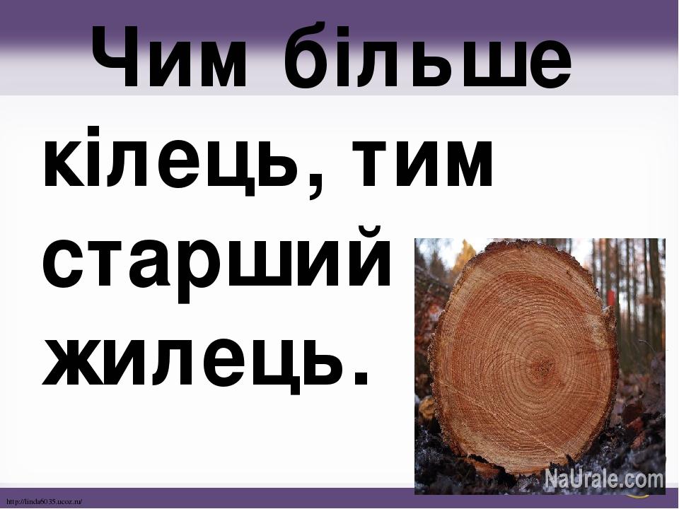 Чим більше кілець, тим старший жилець. http://linda6035.ucoz.ru/