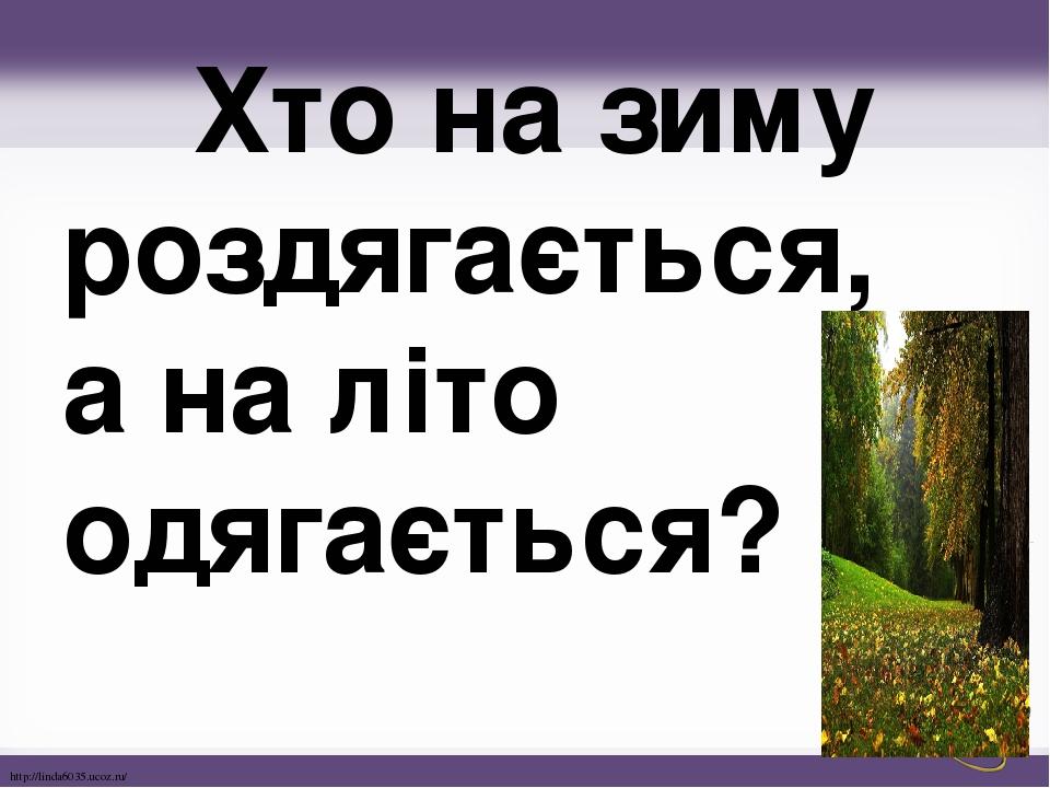 Хто на зиму роздягається, а на літо одягається? http://linda6035.ucoz.ru/