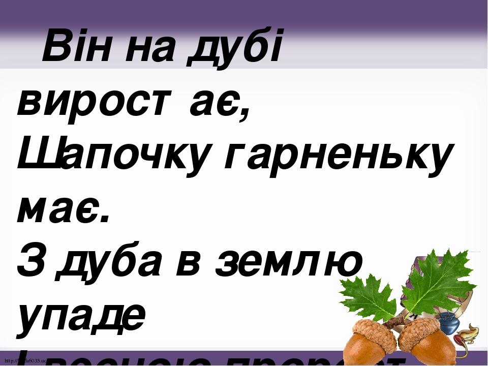 Він на дубі виростає, Шапочку гарненьку має. З дуба в землю упаде І весною проросте. http://linda6035.ucoz.ru/