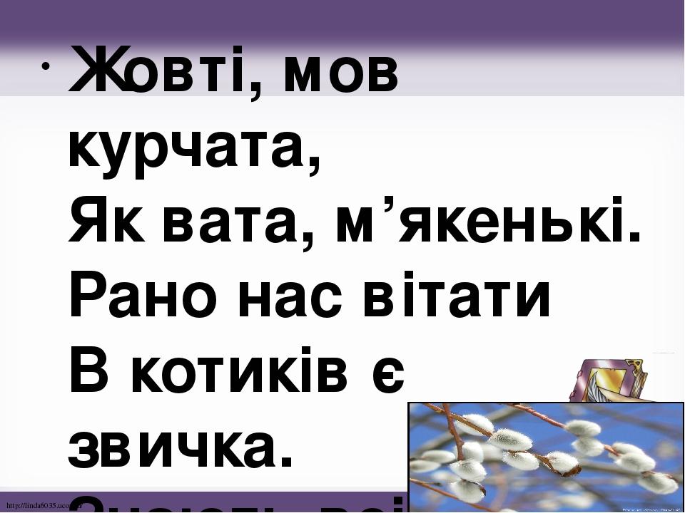 Жовті, мов курчата, Як вата, м'якенькі. Рано нас вітати В котиків є звичка. Знають всі малята – Це цвіте – … http://linda6035.ucoz.ru/