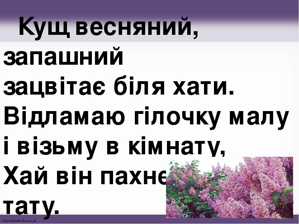 Кущ весняний, запашний зацвітає біля хати. Відламаю гілочку малу і візьму в кімнату, Хай він пахне мамі й тату. http://linda6035.ucoz.ru/