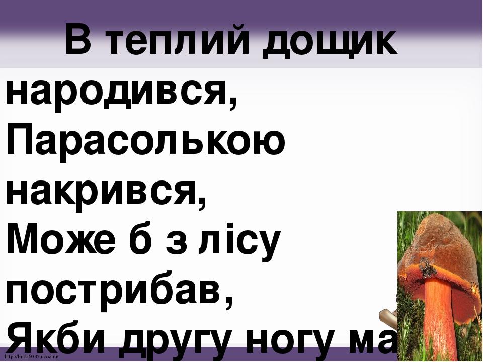 В теплий дощик народився, Парасолькою накрився, Може б з лісу пострибав, Якби другу ногу мав! http://linda6035.ucoz.ru/