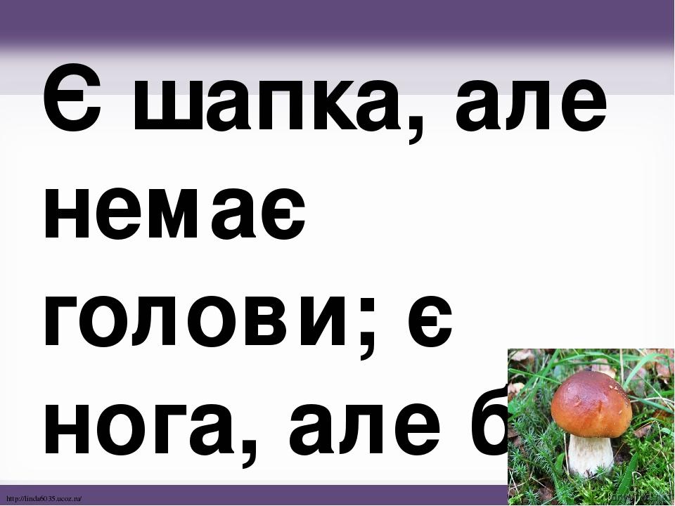 Є шапка, але немає голови; є нога, але без черевика. http://linda6035.ucoz.ru/