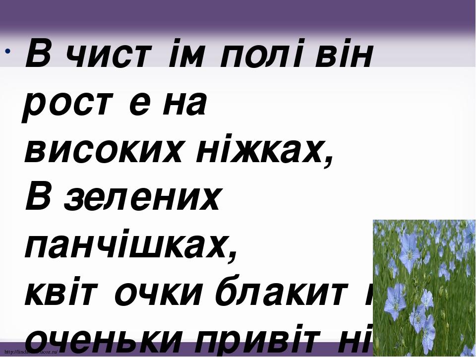 В чистім полі він росте на високих ніжках, В зелених панчішках, квіточки блакитні, оченьки привітні. http://linda6035.ucoz.ru/