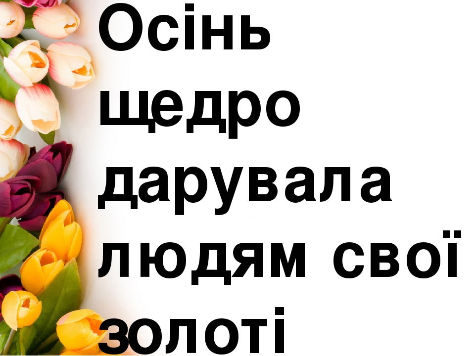 Осінь щедро дарувала людям свої золоті посмішки .