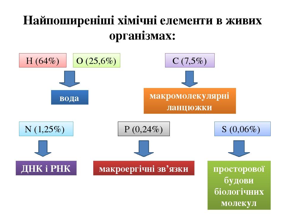Найпоширеніші хімічні елементи в живих організмах: Н (64%) О (25,6%) вода С (7,5%) макромолекулярні ланцюжки N (1,25%) ДНК і РНК P (0,24%) макроерг...
