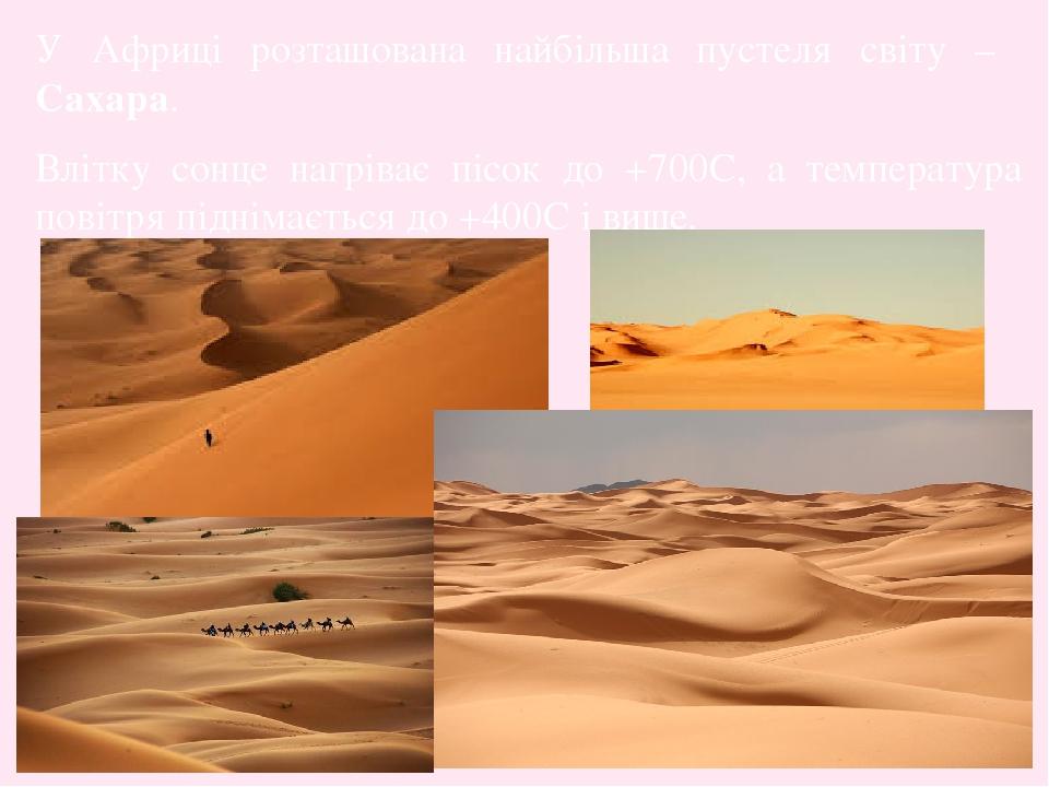 У Африці розташована найбільша пустеля світу – Сахара. Влітку сонце нагріває пісок до +700C, а температура повітря піднімається до +400C і вище.
