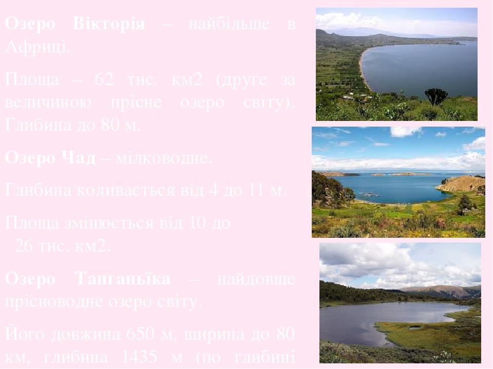 Озеро Вікторія – найбільше в Африці. Площа – 62 тис. км2 (друге за величиною прісне озеро світу). Глибина до 80 м. Озеро Чад – мілководне. Глибина ...