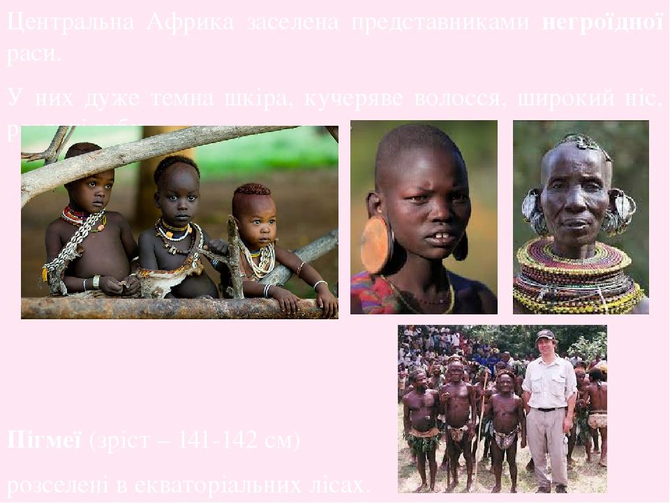 Центральна Африка заселена представниками негроїдної раси. У них дуже темна шкіра, кучеряве волосся, широкий ніс, роздуті губи. Пігмеї (зріст – 141...