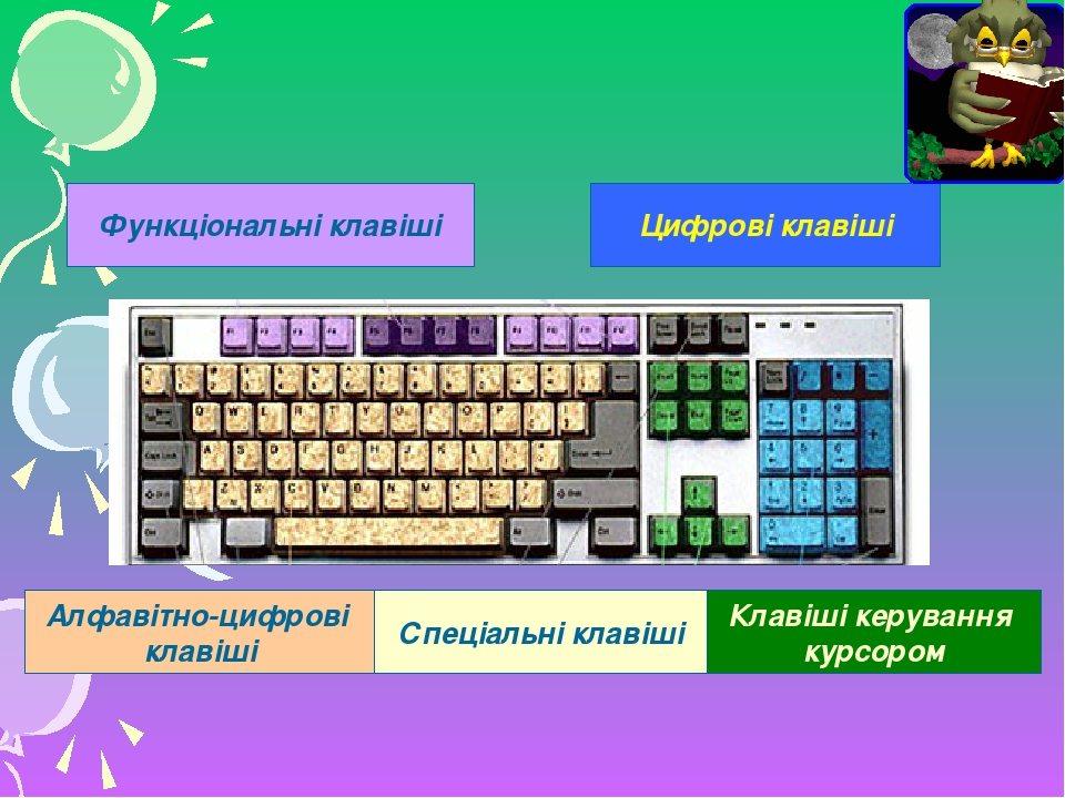Функціональні клавіші Цифрові клавіші Алфавітно-цифрові клавіші Спеціальні клавіші Клавіші керування курсором