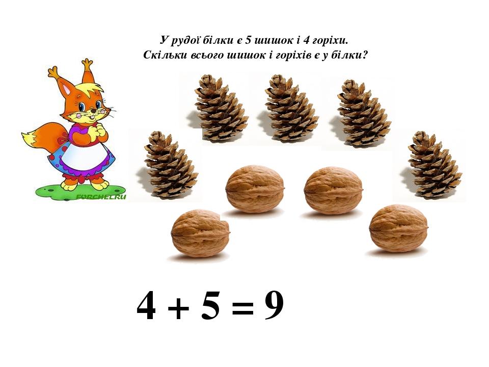 У рудої білки є 5 шишок і 4 горіхи. Скільки всього шишок і горіхів є у білки? 4 + 5 = 9
