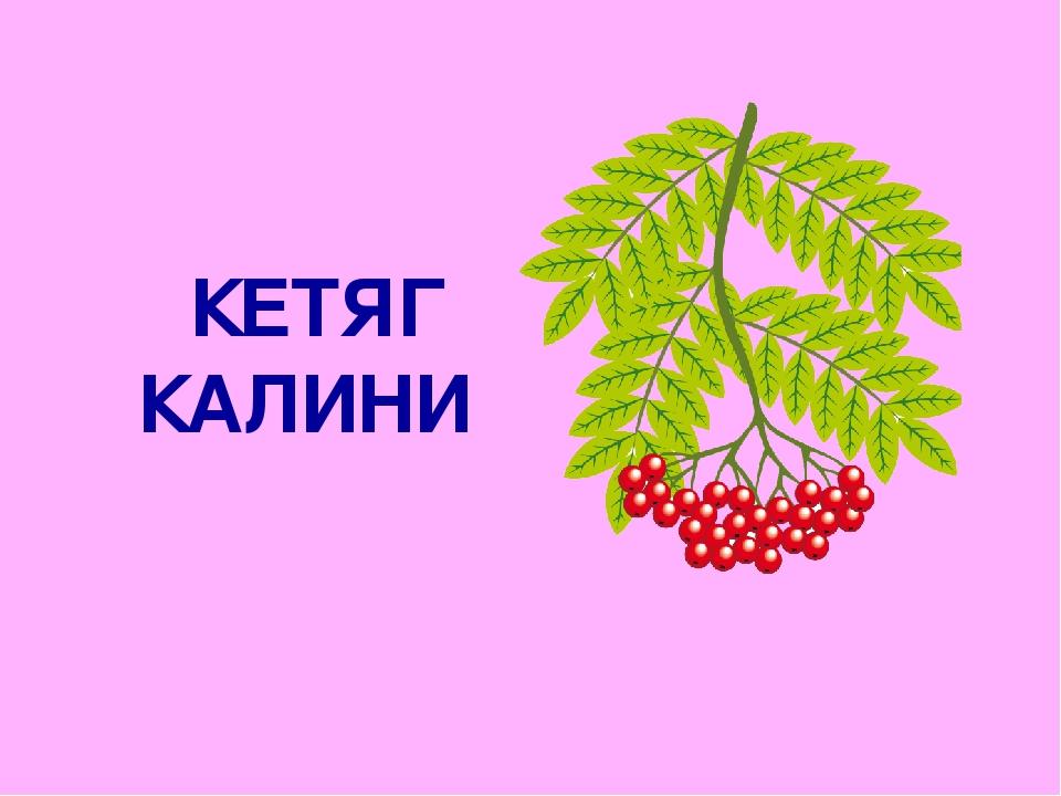 КЕТЯГ КАЛИНИ