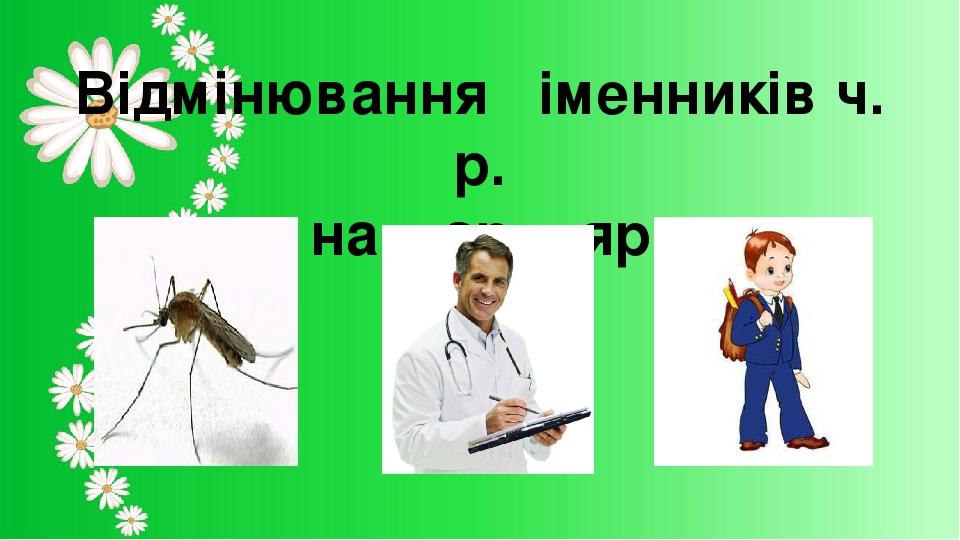 Відмінювання іменників ч. р. на – ар, - яр