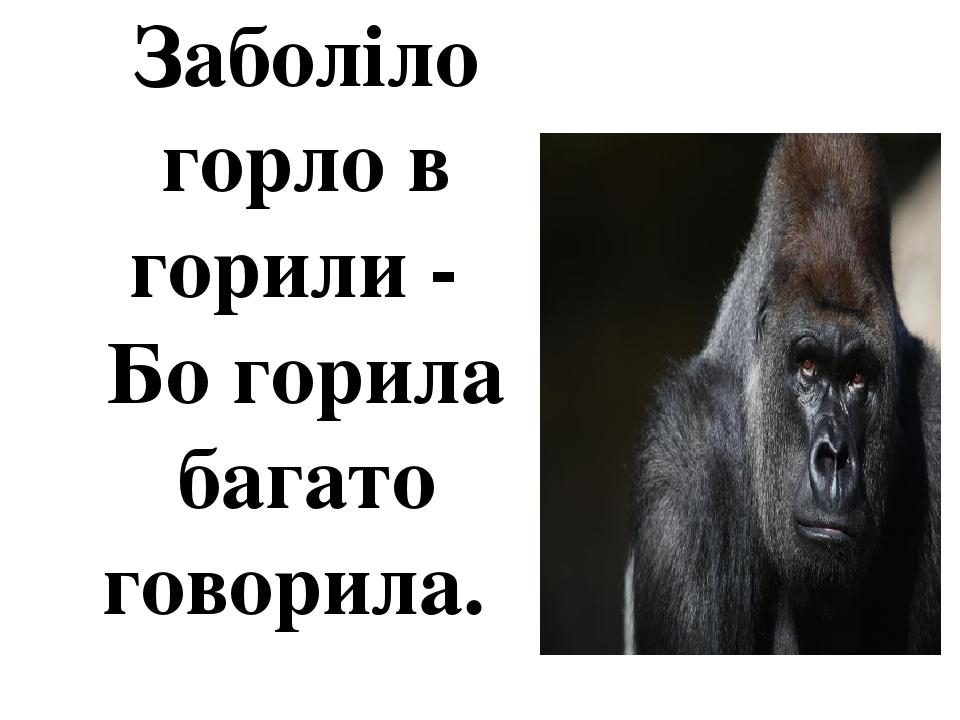 Заболіло горло в горили - Бо горила багато говорила.