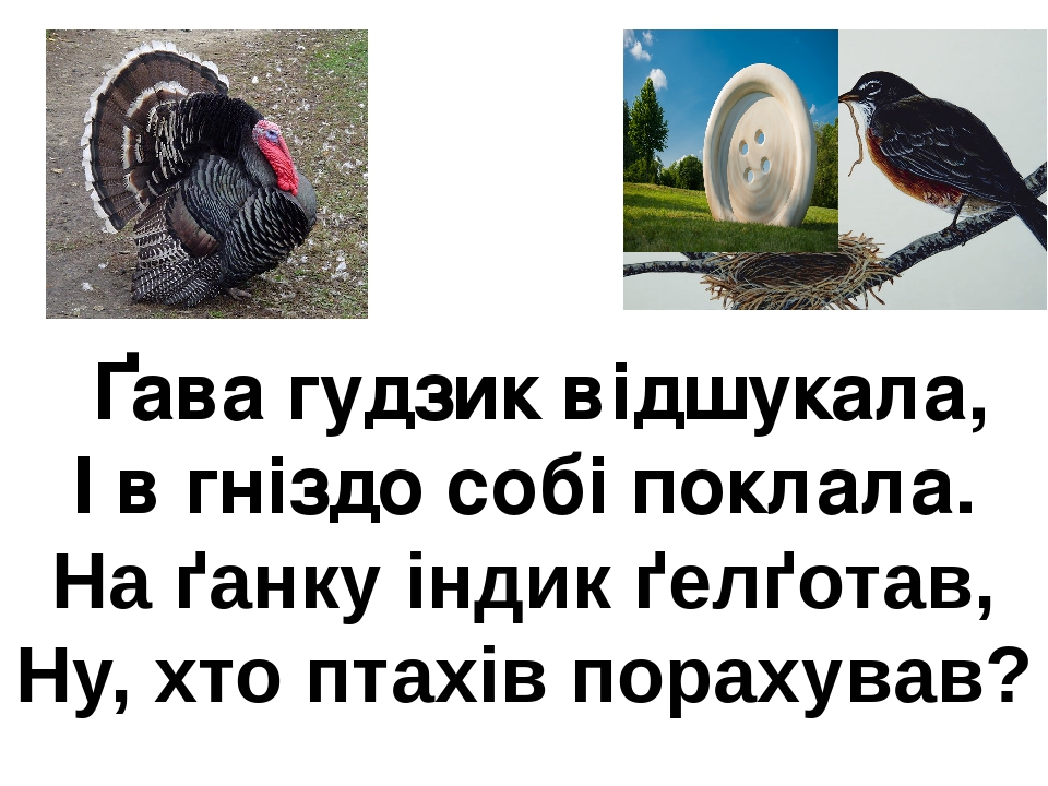 Ґава гудзик відшукала, І в гніздо собі поклала. На ґанку індик ґелґотав, Ну, хто птахів порахував?