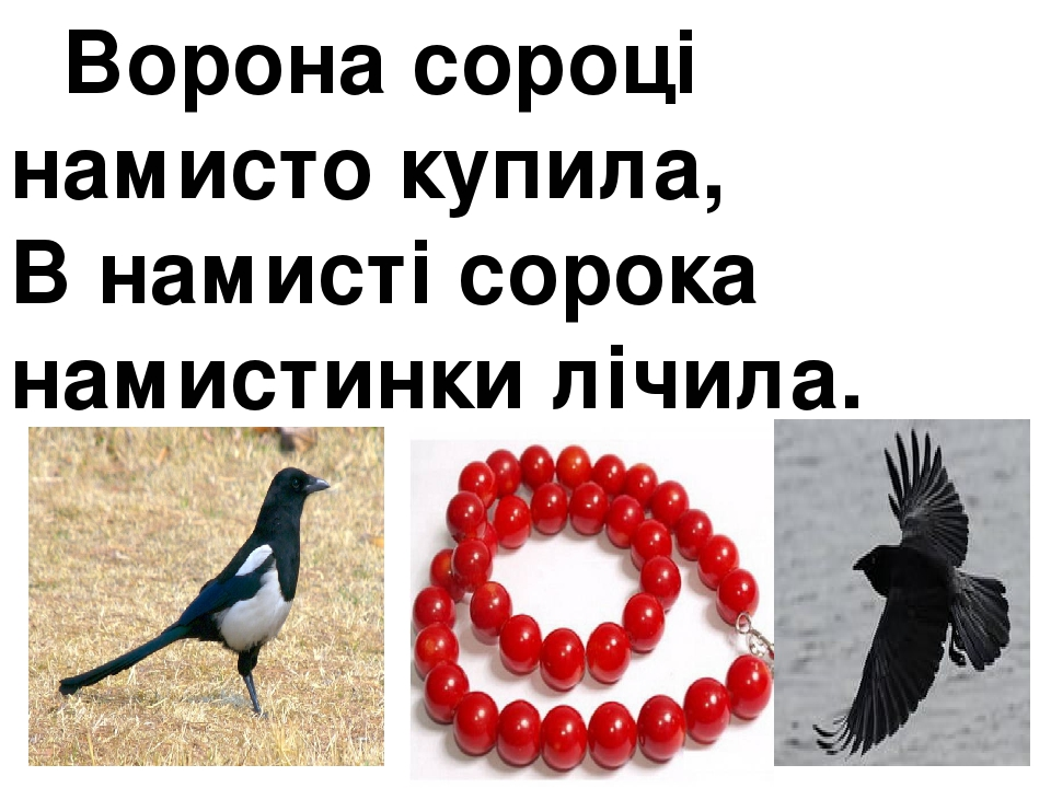 Ворона сороці намисто купила, В намисті сорока намистинки лічила.