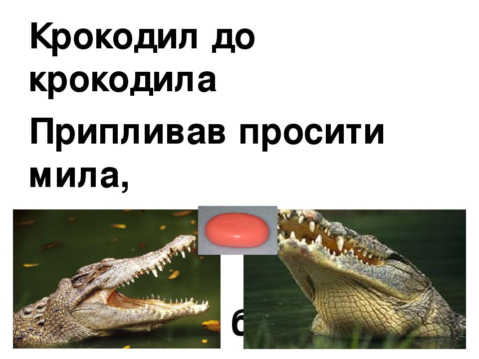 Крокодил до крокодила Припливав просити мила, Бо набридло крокодилу Умиватися без мила.