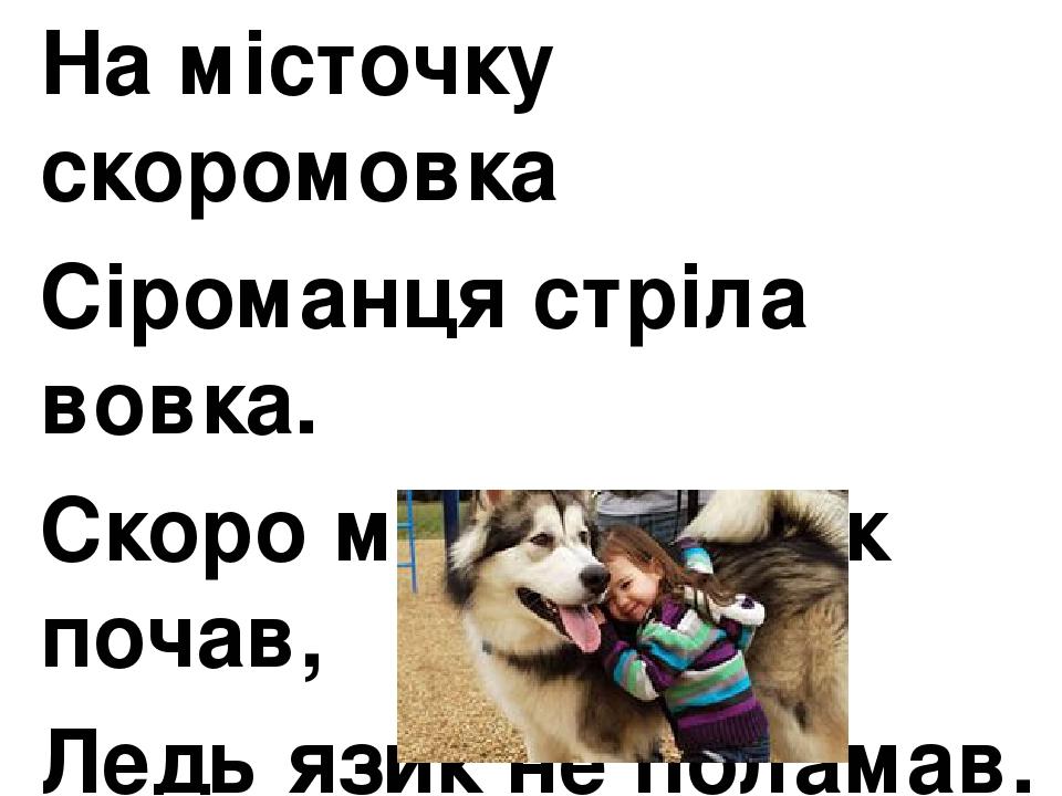 На місточку скоромовка Сіроманця стріла вовка. Скоро мовить вовк почав, Ледь язик не поламав.
