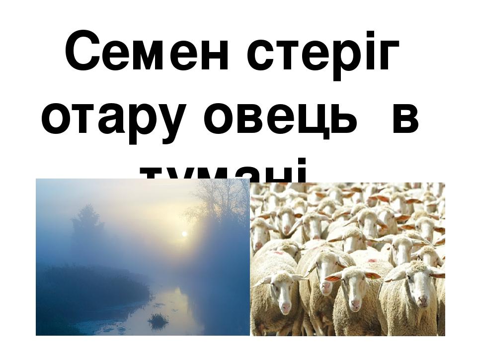 Семен стеріг отару овець в тумані.