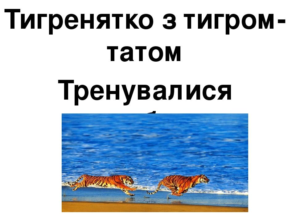 Тигренятко з тигром-татом Тренувалися стрибати.
