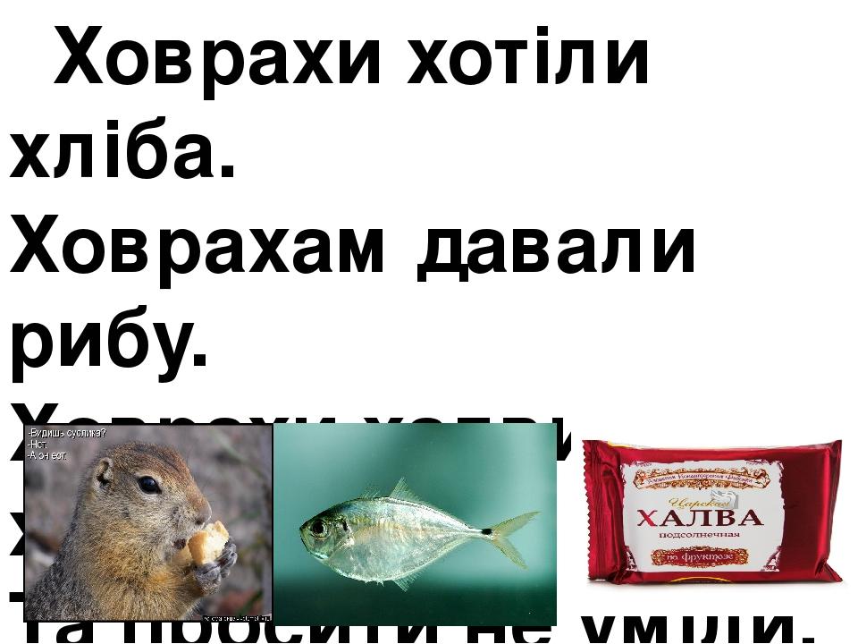 Ховрахи хотіли хліба. Ховрахам давали рибу. Ховрахи халви хотіли, Та просити не уміли.