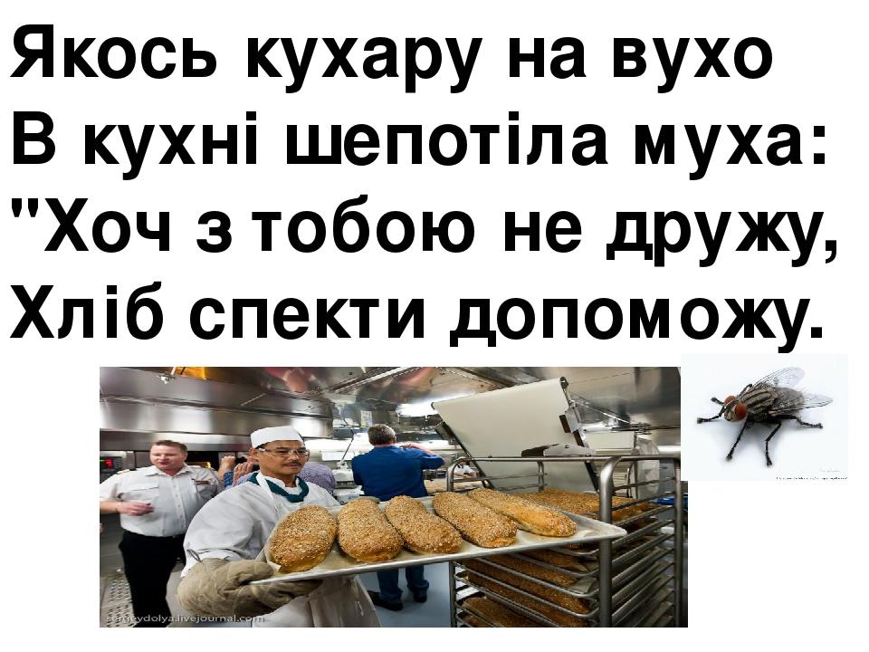 """Якось кухару на вухо В кухні шепотіла муха: """"Хоч з тобою не дружу, Хліб спекти допоможу."""