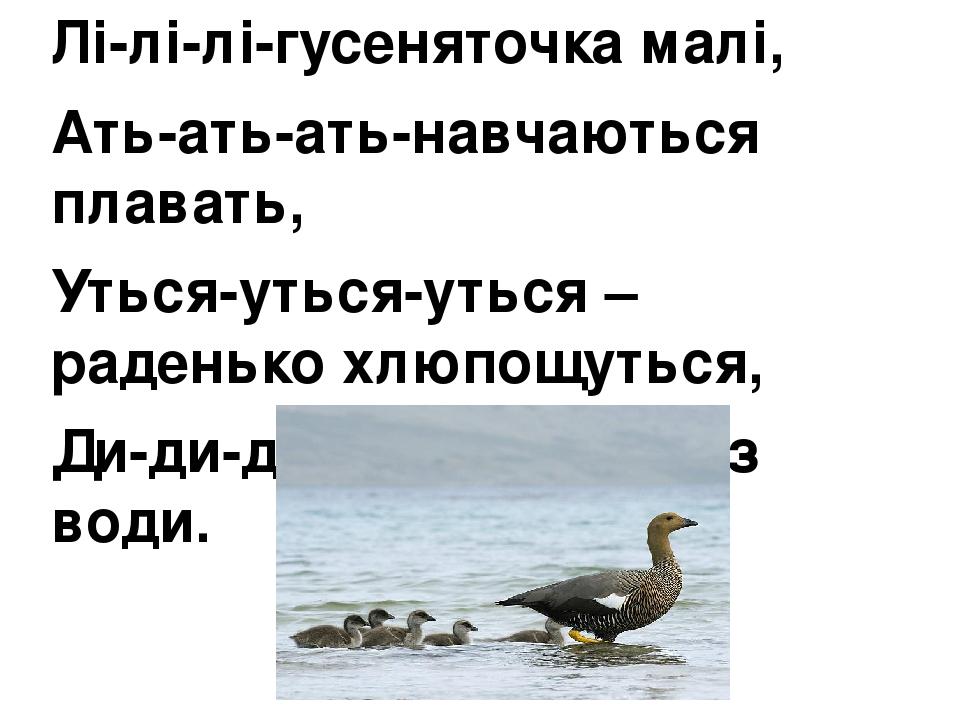 Лі-лі-лі-гусеняточка малі, Ать-ать-ать-навчаються плавать, Уться-уться-уться –раденько хлюпощуться, Ди-ди-ди – вийшли всі з води.