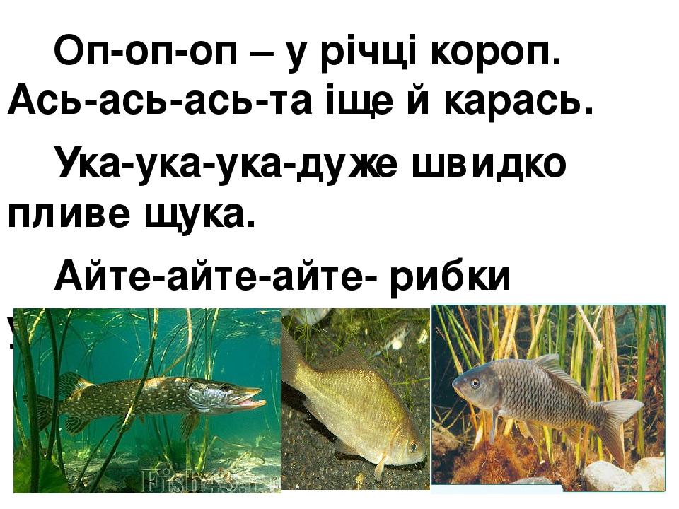 Оп-оп-оп – у річці короп. Ась-ась-ась-та іще й карась. Ука-ука-ука-дуже швидко пливе щука. Айте-айте-айте- рибки утікайте.
