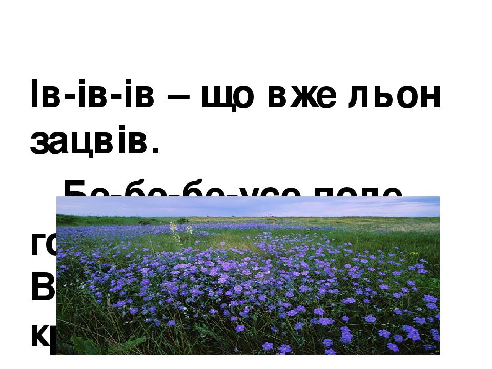 Ів-ів-ів – що вже льон зацвів. Бе-бе-бе-усе поле голубе. Во-во-во – дуже тут красиво.