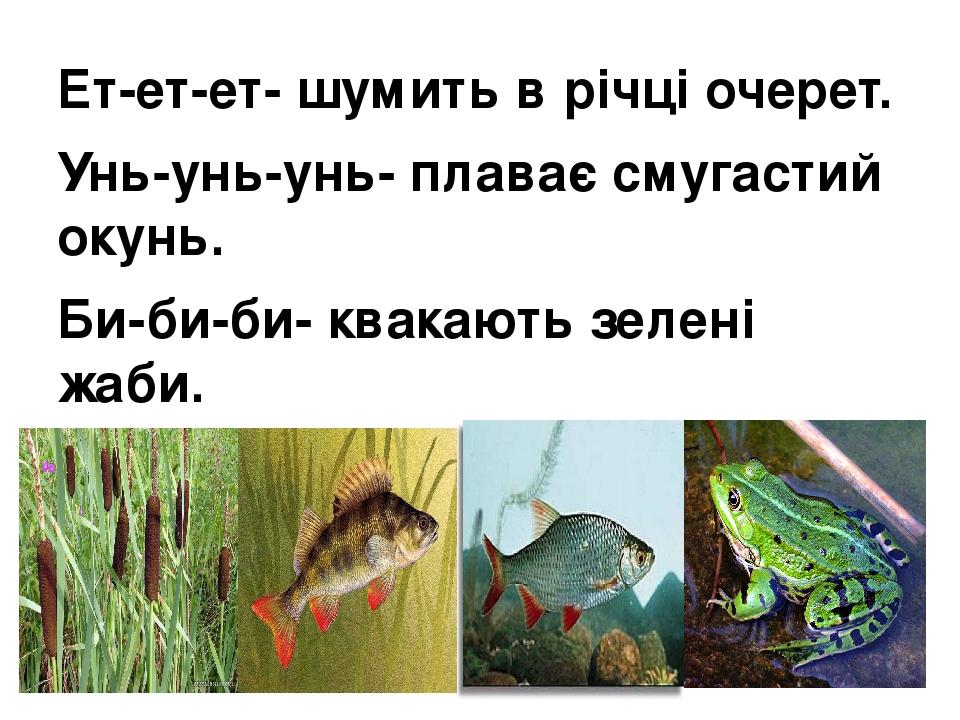 Ет-ет-ет- шумить в річці очерет. Унь-унь-унь- плаває смугастий окунь. Би-би-би- квакають зелені жаби. Ки-ки-ки- і танцюють краснопірки.