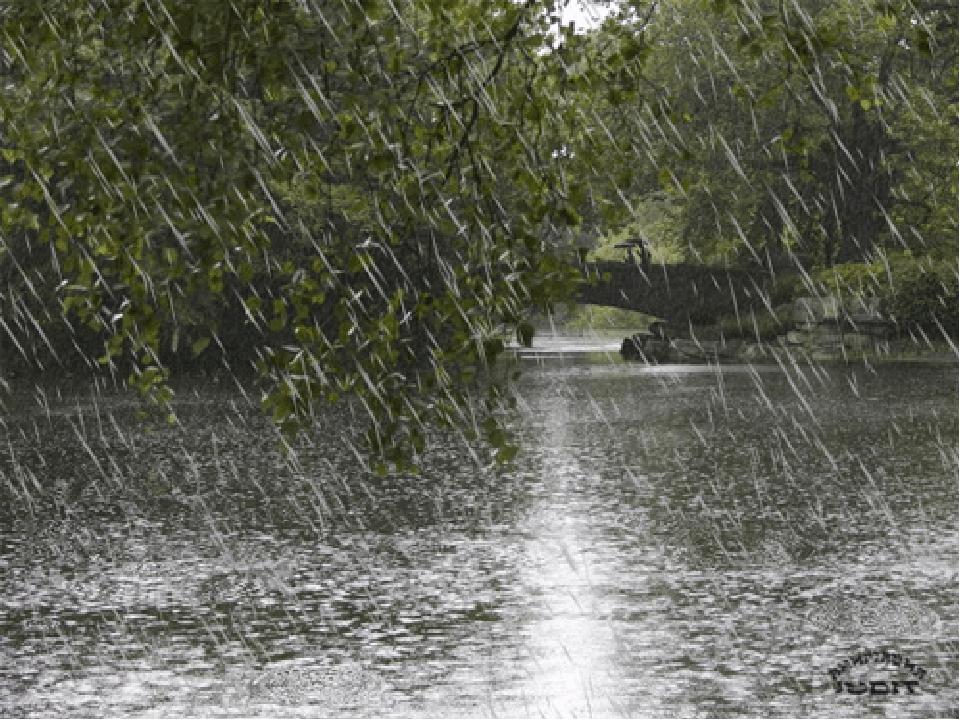 На болоті журавель Цілий день збирав щавель. Назбирав собі на борщ, Та якраз вперіщив дощ. сумно весело тихенько швидко