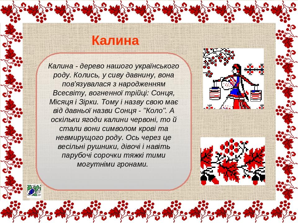 Калина - дерево нашого українського роду. Колись, у сиву давнину, вона пов'язувалася з народженням Всесвіту, вогненної трійці: Сонця, Місяця і Зірк...