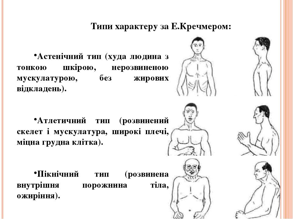 Типи характеру за Е.Кречмером: Астенічний тип (худа людина з тонкою шкірою, нерозвиненою мускулатурою, без жирових відкладень). Атлетичний тип (роз...