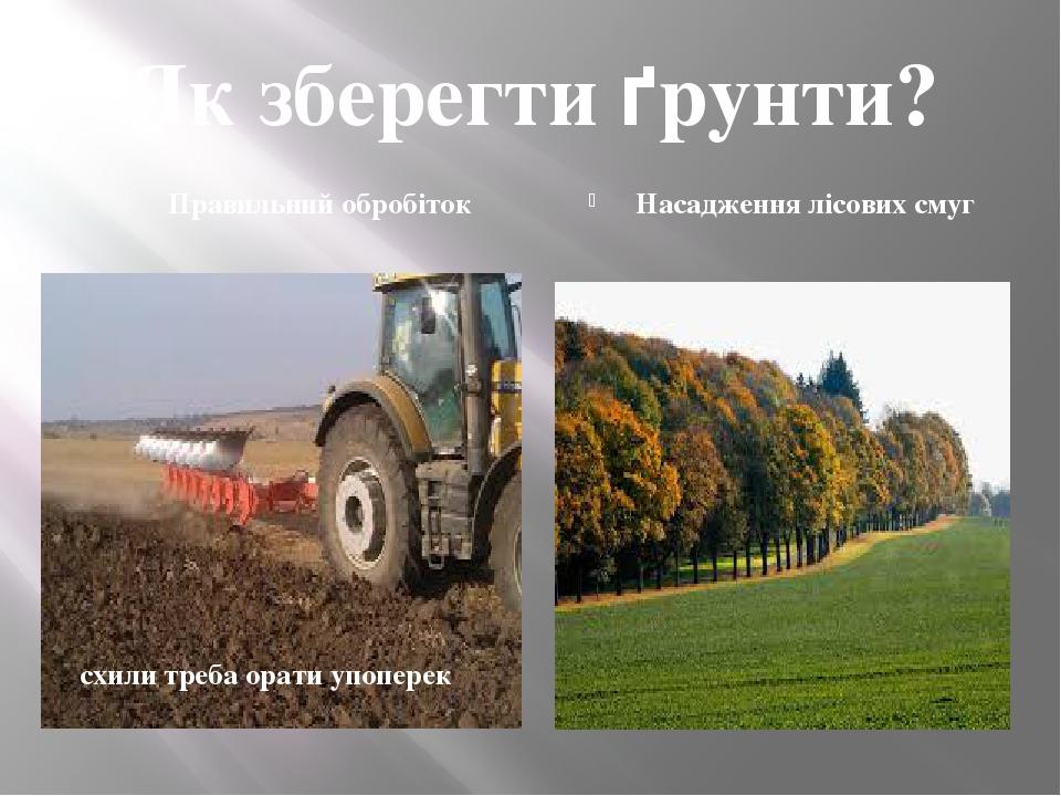 Як зберегти ґрунти? Правильний обробіток Насадження лісових смуг схили треба орати упоперек