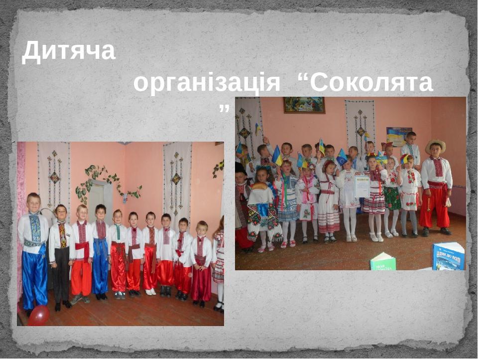 """Дитяча організація """"Соколята """""""
