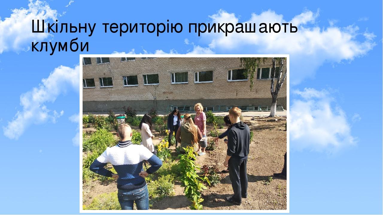 Шкільну територію прикрашають клумби та міні - садочки