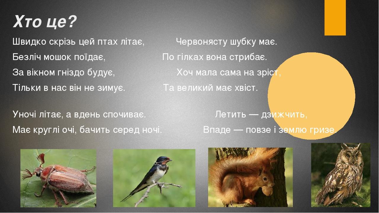 Хто це? Швидко скрізь цей птах літає, Червонясту шубку має. Безліч мошок поїдає, По гілках вона стрибає. За вікном гніздо будує, Хоч мала сама на з...